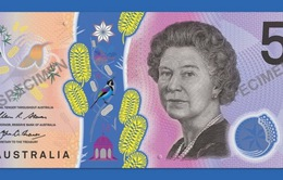 Dân Úc chê thậm tệ tờ tiền giấy 5 đô mới