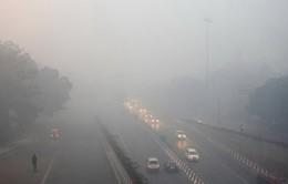 Ấn Độ mịt mù khói pháo hoa, dân mạng nổi giận