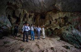 Quảng Ninh phủ nhận việc chặt nhũ đá hang động vịnh Hạ Long