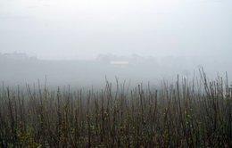 Buổi sáng đuổi theo mây và sươngở Tân Hà