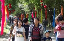 Tết năm nay rừng Cà Mau, Đồng Tháp 'tiếp khách mệt nghỉ'