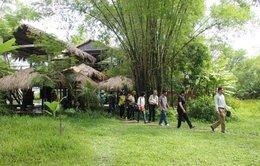 Triêm Tây - vùng đất lở thành điểm du lịch làng quê