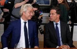 Điềm lành từ Hà Lan, nhưng...