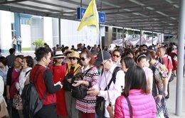 Xử phạt nhiều hướng dẫn viên du lịch