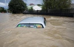 Bão lụt '500 năm có một', cả thị trấn ở New Zealand sơ tán