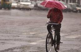 Dân Trung Quốc thuê dù rồi cầm luôn gần 300.000 chiếc
